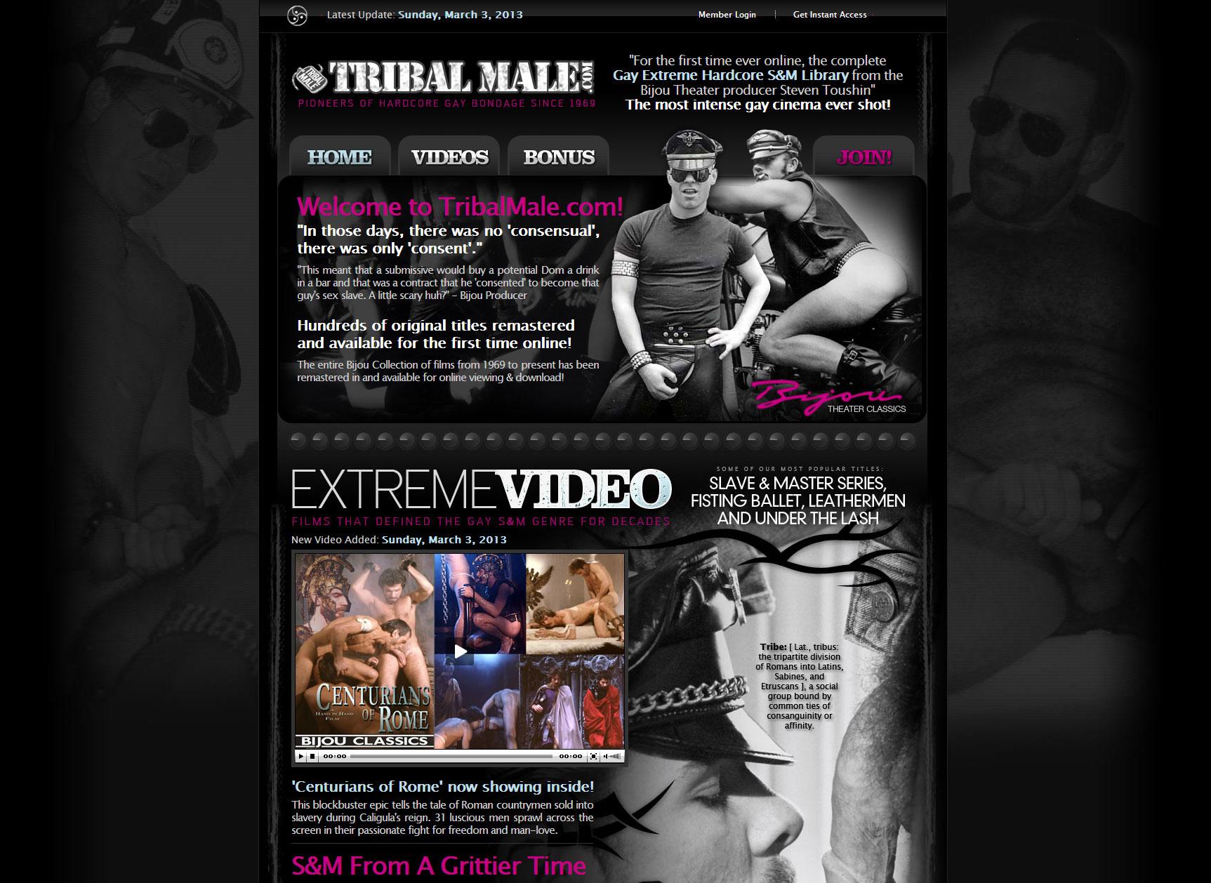 Gay Website Design 46