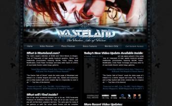 Wasteland v3