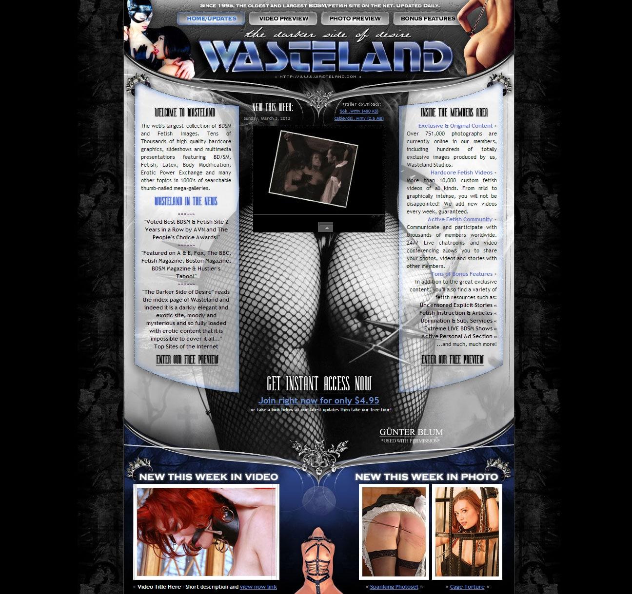 Wasteland v2