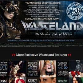 Wasteland 2016